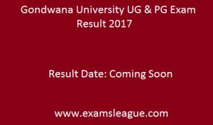 Gondwana University Result 2017 BA Bsc Bcom MA Msc Mcom