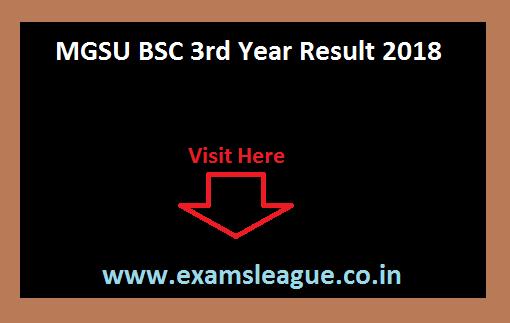 MGSU BSC 3rd Year Result