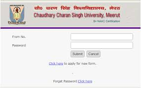 CCSU B.Ed Admit Card 2019