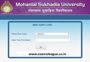 MLSU MSC Previous Year Admit Card 2019