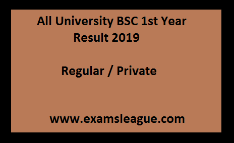 BSC 1st Year Result 2019 Regular / Private