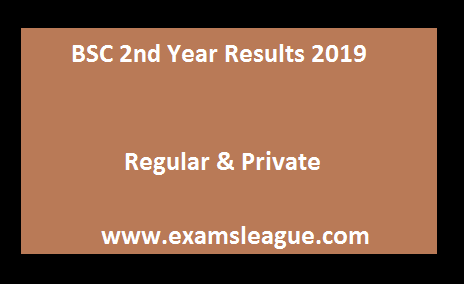 BSC 2nd Year Results 2019