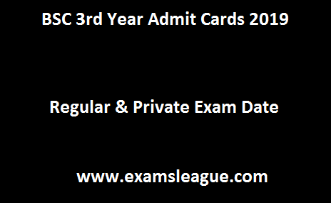 BSC 3rd Year Admit Cards 2019