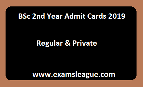 BSc 2nd Year Admit Cards 2019