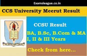 CCSU BA Result 2019