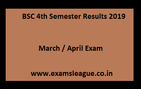 BSC 4th Semester Results 2019