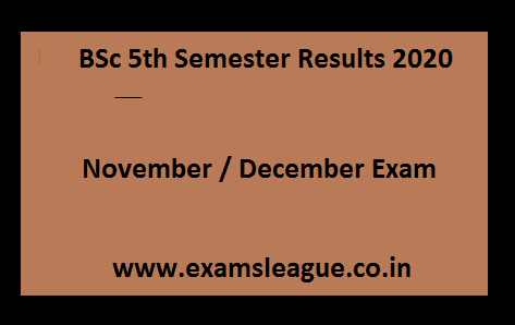 BSc 5th Semester Results 2020