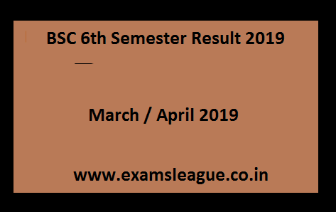 BSC 6th Semester Result 2019